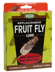 Fruit Fly Lures, Set of 3