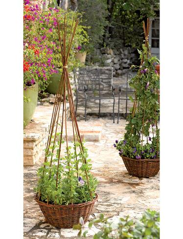 Willow Obelisk Planter