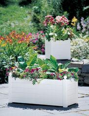 Terrazza Trough Planter