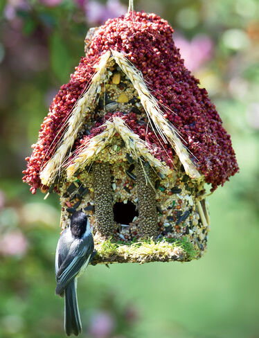 Bird Seed Woodland Cottage