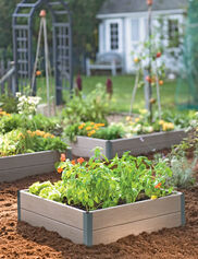 Forever Raised Beds