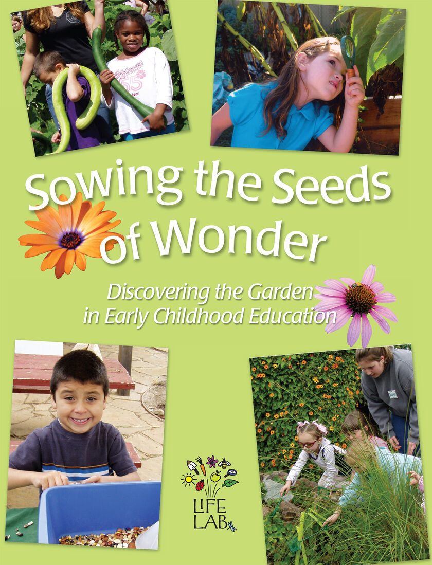 how to prepare seeds for sowing