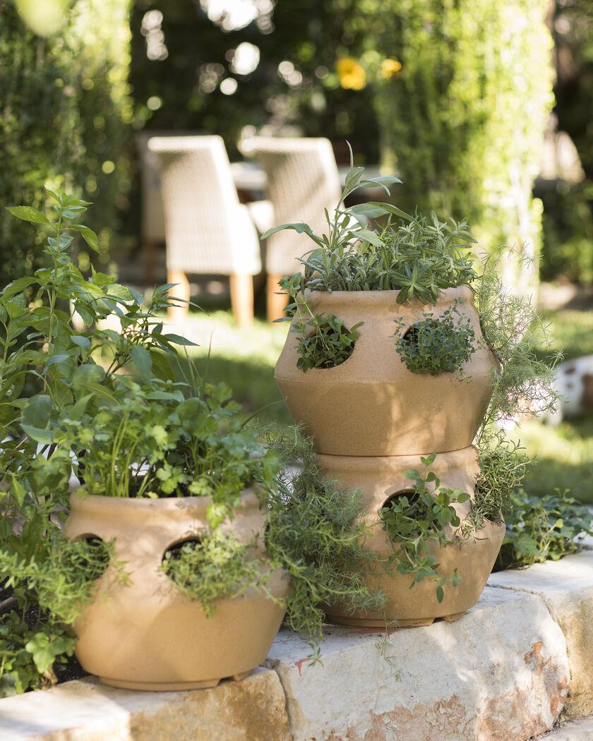 Planters: Strawberry Pot & Herb Planter: Terracotta Colored