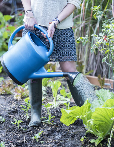 French Watering Can, Blue