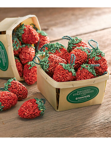 Birdseed Strawberries, Set of 10