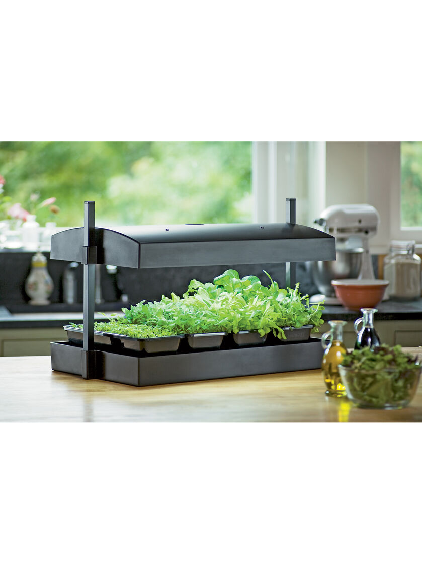 Indoor Kitchen Herb Garden Kit Indoor Herb Garden Kit My Greens Light Garden Gardeners Supply