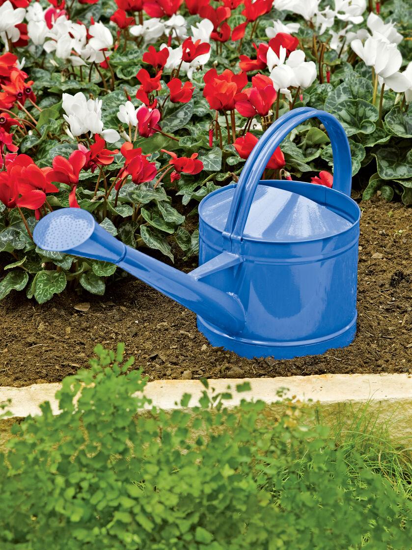 Colorful Metal Watering Can | Gardeners.com