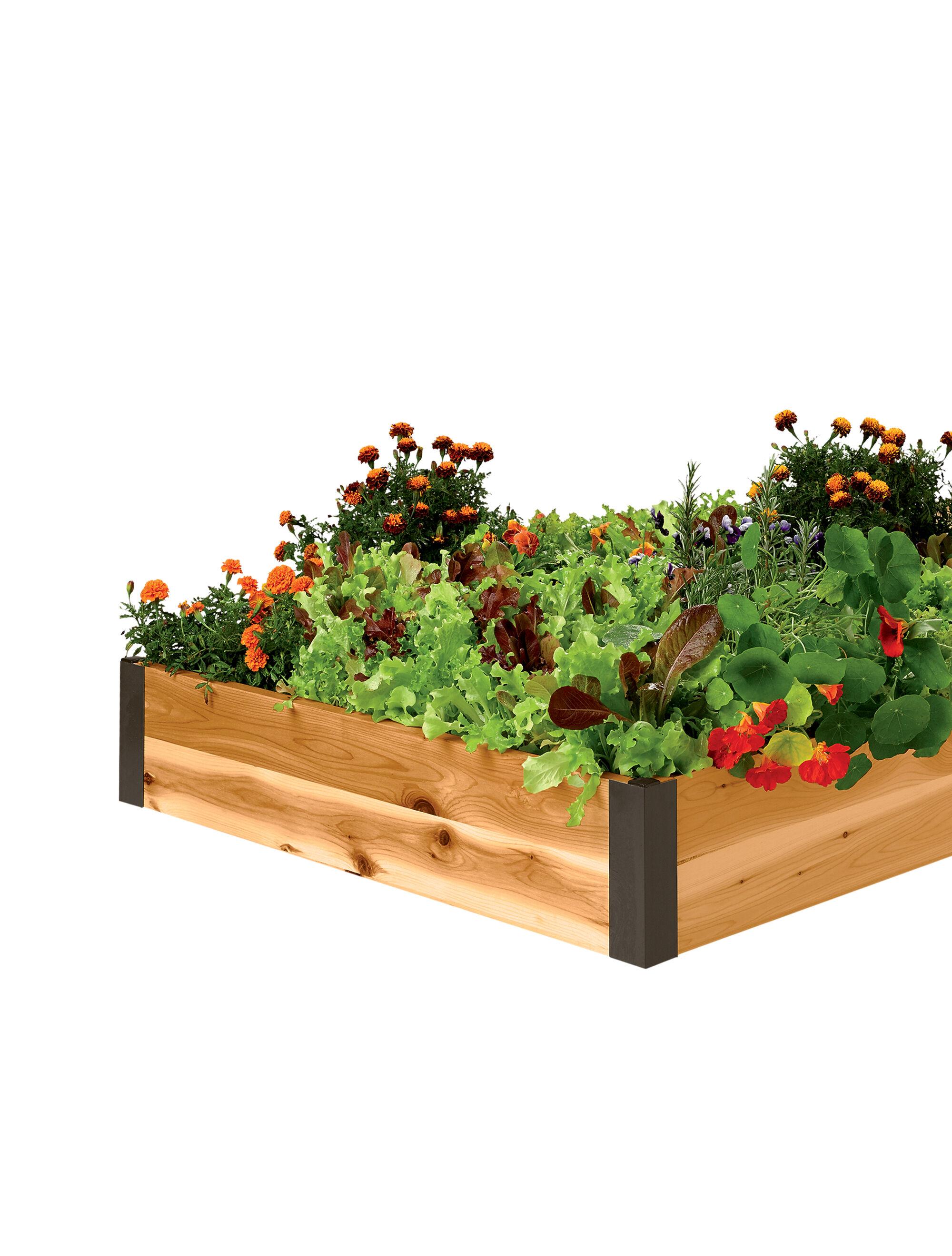 Raised bed corners diy raised garden beds gardener 39 s for Gardeners supply burlington
