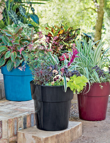 Sonoma Self-Watering Planter, Large
