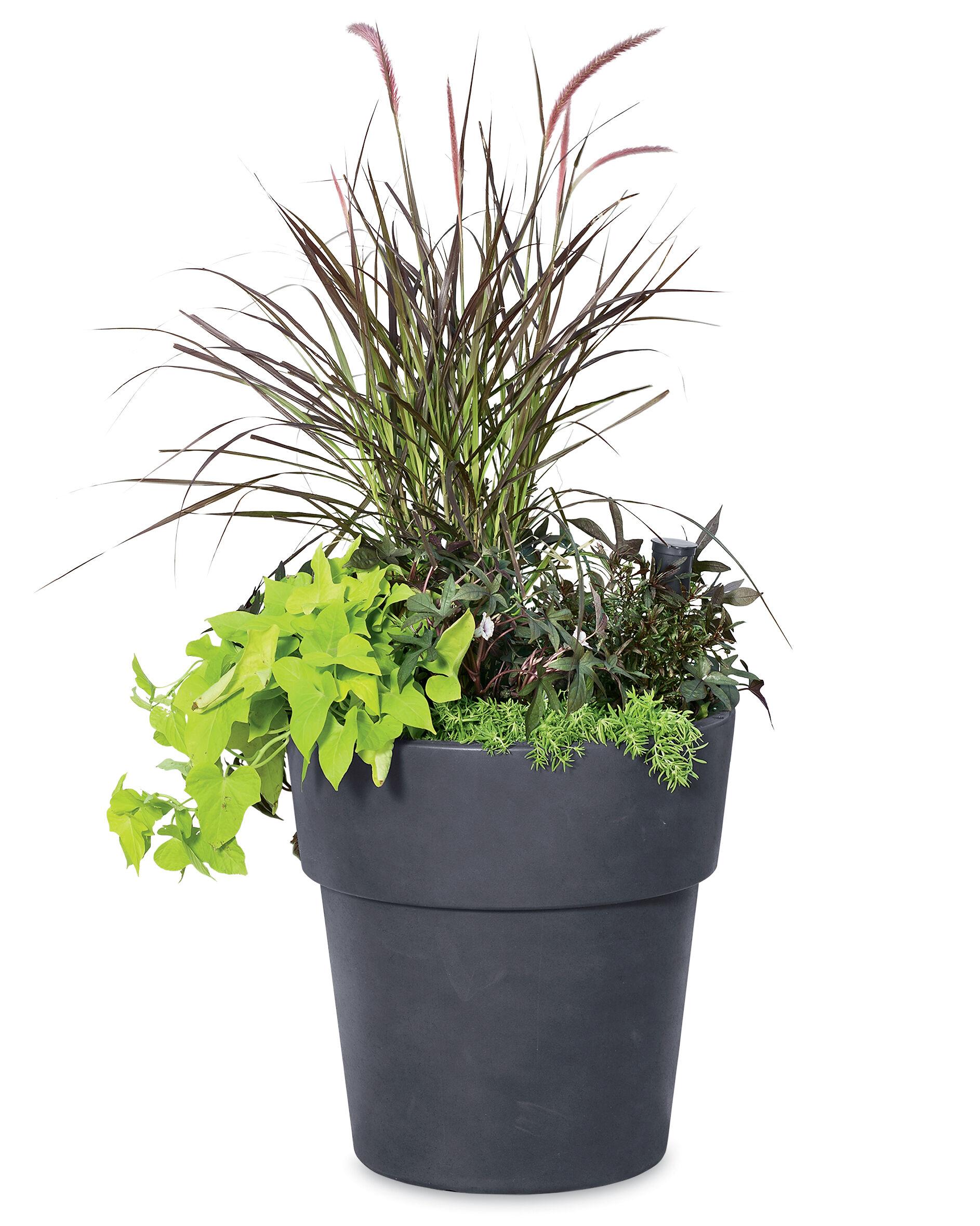 Flower Pots Flower Planters Decorative Planters