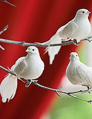 Clip-on Dove Ornaments, Set of 3