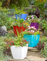 Self-Watering Rolling Planter, Square