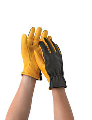 Gold Leaf Dry Touch™ Gloves