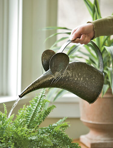 Mouse Watering Can