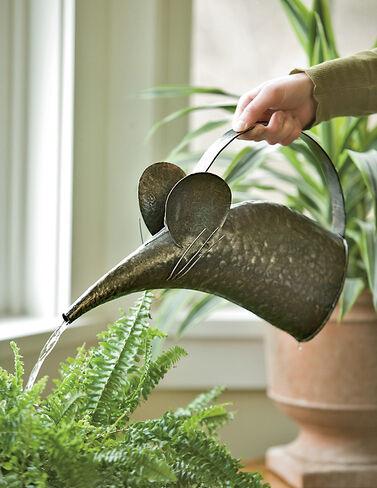Mouse Watering Can Watering Cans, Watering, Water Cans, Watering Can, Water Can, Garden Watering, Greenhouse Watering