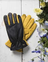Women's Dry Touch™ Gloves