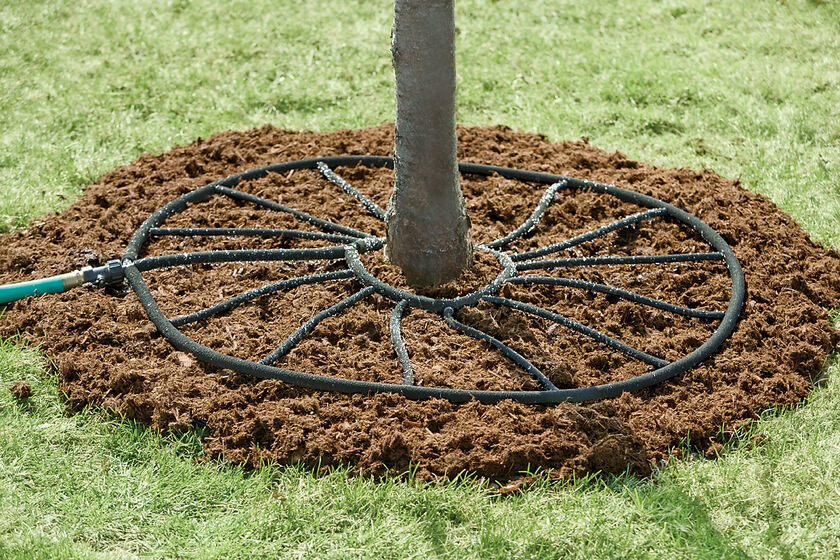 Slow Release Tree Watering Ring Buy From Gardener S Supply
