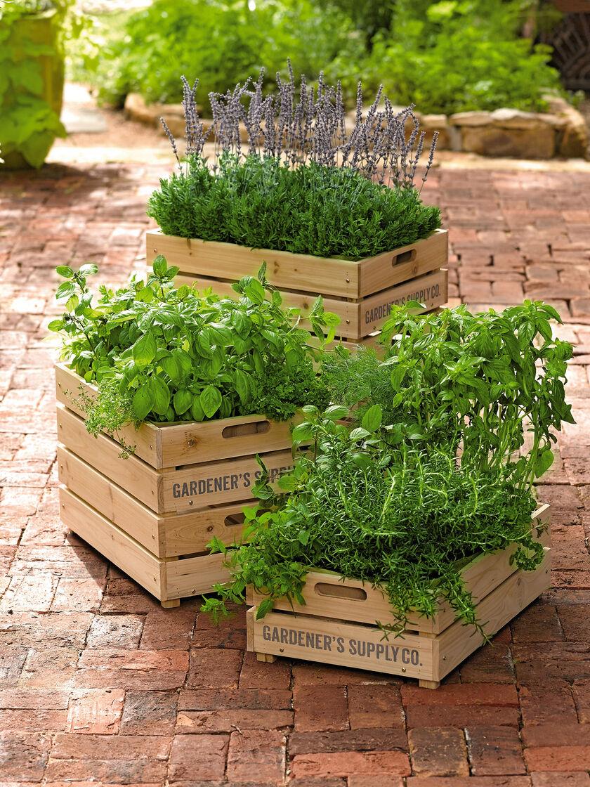 Image Result For Wine Box Vegetable Garden