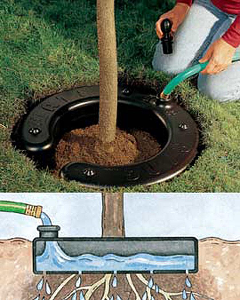Homemade Drip Irrigation System