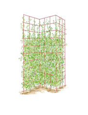 Three Panel Trellis