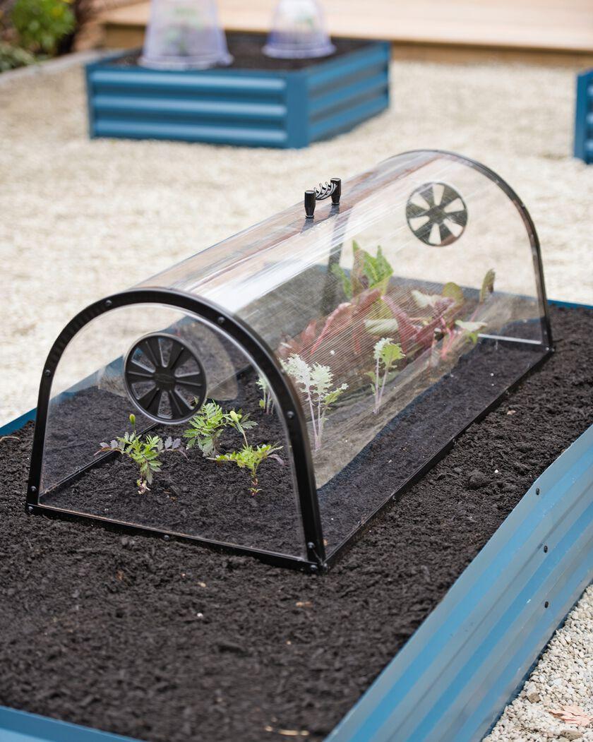 Row Garden Cloche Plastic Cloche Tunnel by Haxnicks