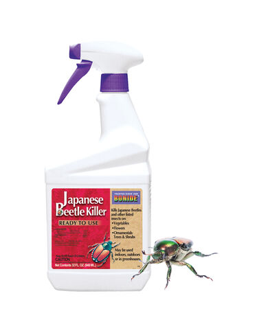 Japanese Beetle Killer