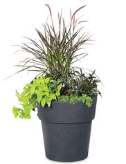Sonoma Indoor Planter, Large