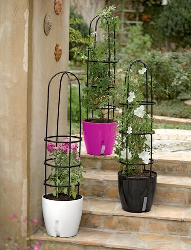 WaterEase Self-Watering Planter with Support