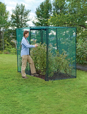 Crop Cage, 4' x 8'