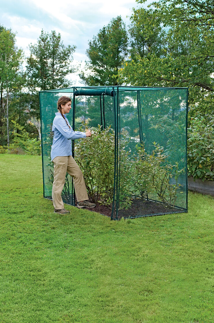 Crop Cage 4 x 8 x 6 Tall Blueberry Bush Covers Crop Protection