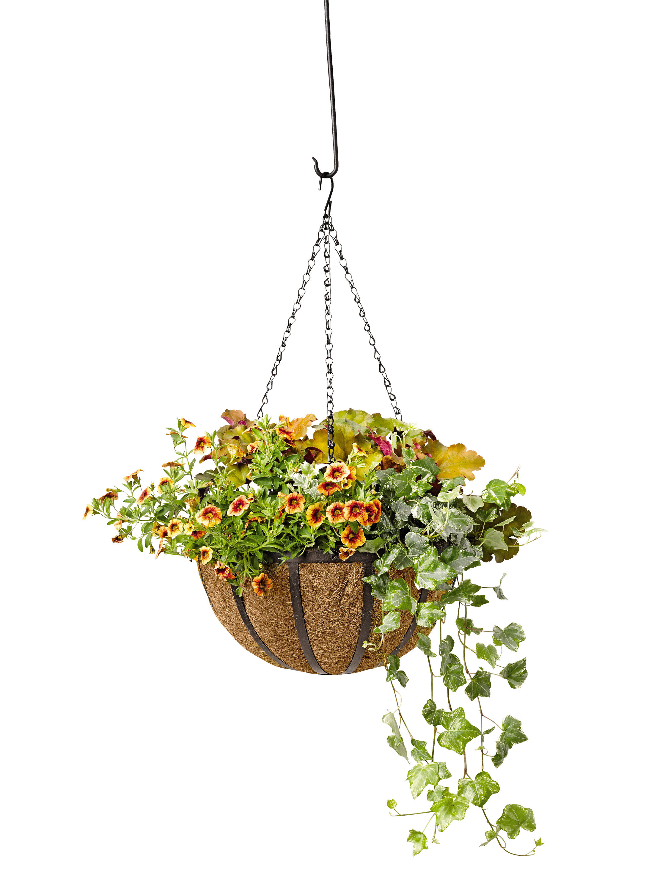 Hanging Flower Basket Maintenance : Self watering planters flower pots containers