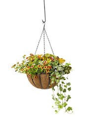 AquaSav™ Oxford Hanging Basket, 14""