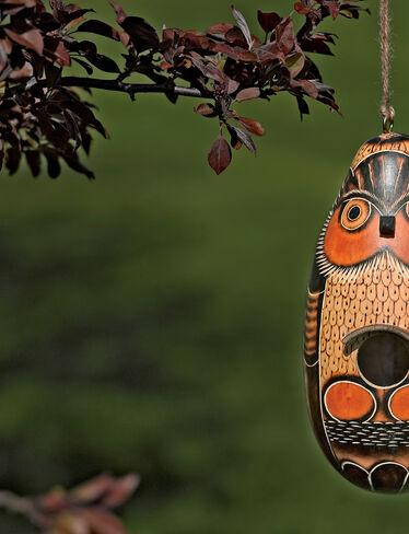 Peruvian Owl Birdhouse