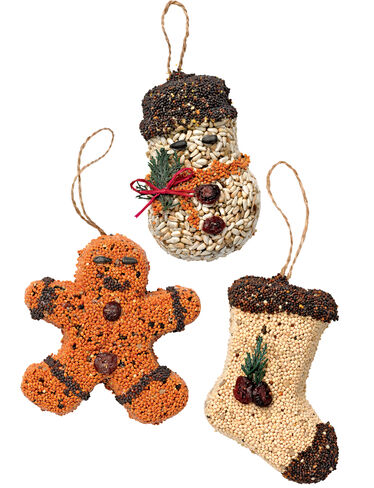 Birdseed Ornaments, Set of 3