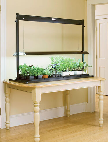 T-5 Tabletop SunLite® Garden
