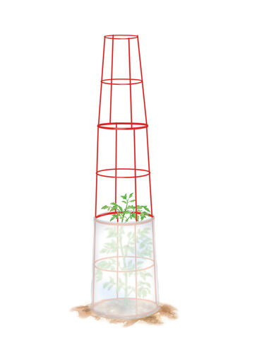 Tall Weather Defender™ Tomato Cages, Set of 2