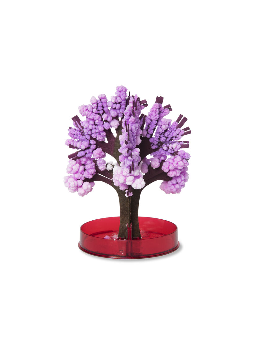 Crystal Growing Kit Crystal Growing Cherry Tree