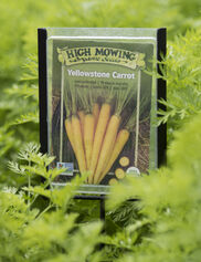 Seed Packet Plant Markers, Set of 3