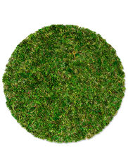 "14"" Moss Basket Liners, Set of 3"