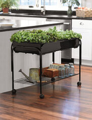 Mobile Salad Garden Plant Stand