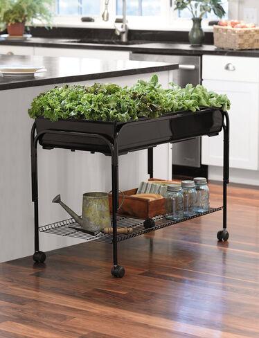 Indoor planters mobile salad garden gardener 39 s supply for Gardeners supply planters