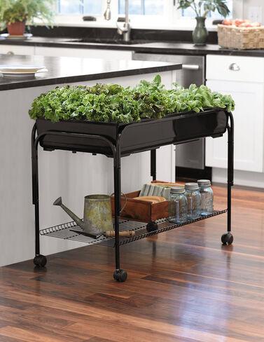 Mobile Salad Garden Salad Greens Seeds, Salad Greens Seed, Salad Seeds, Salad Greens, Garden Seeds, Vegetable Seeds