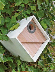 Urban Birdhouse