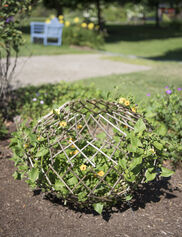 Expandable Willow Globe