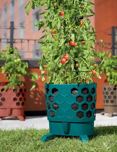 Gardener's Revolution® Tomato Planter