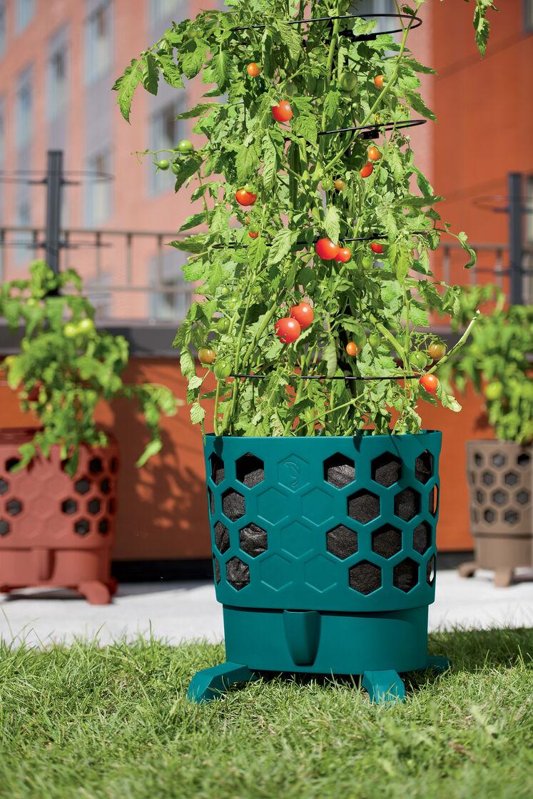 Gardener 39 s revolution tomato planter gardener 39 s supply for Gardeners supply planters