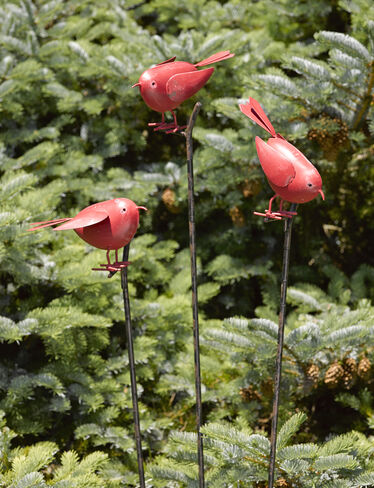 Songbird Stakes, Set of 3