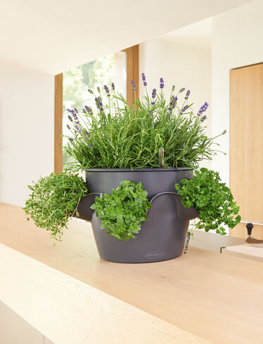 Cascadino Stack-or-Hang Self-Watering Herb Planter