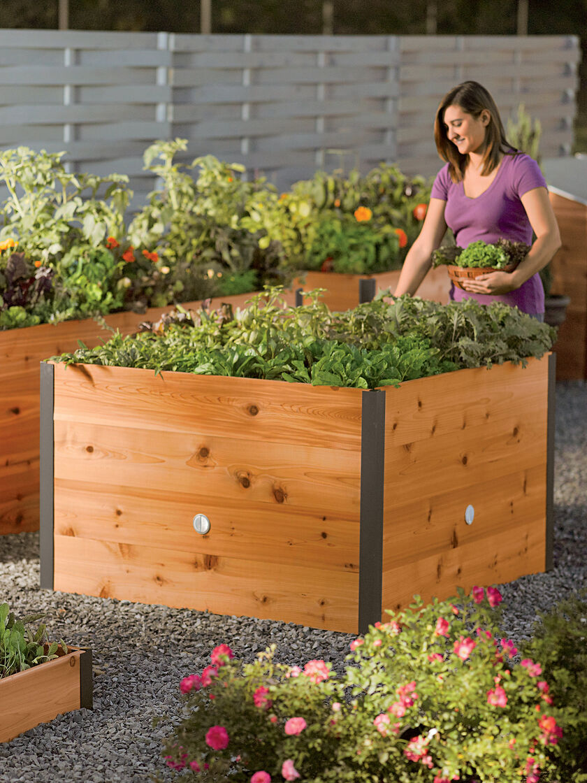 4x4 Elevated Cedar Raised Bed Raised Planter Beds US Made