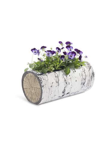 Surreal™ Woodland Birch Horizontal Planter, 11""
